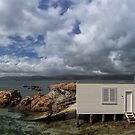 Wellington Today, Karaka Bay by Peter Kurdulija