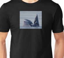 IN CLEAR AND PRESENT DANGER Unisex T-Shirt