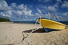 Beached by Vince Russell