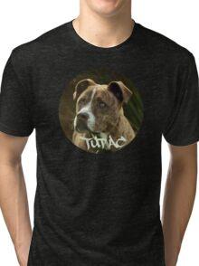 Boy's Best Friend Tri-blend T-Shirt