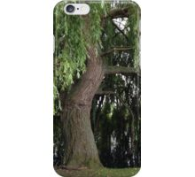 Weeping Willow Tree iPhone Case/Skin