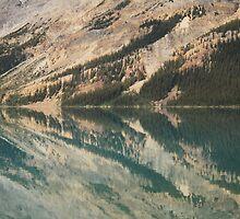 Reflections by Kathryn Steel