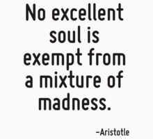 No excellent soul is exempt from a mixture of madness. by Quotr