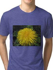 Safe In My Garden Tri-blend T-Shirt