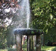 Arboretum Fountain by Caroline Smalley