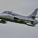 Two Seat Hawker Hunter 2014 by SWEEPER