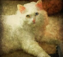 Vintage Kitty Cat by Scott Mitchell