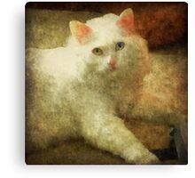 Vintage Kitty Cat Canvas Print