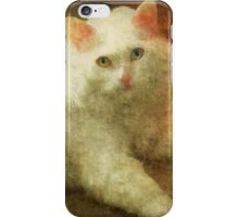 Vintage Kitty Cat iPhone Case/Skin
