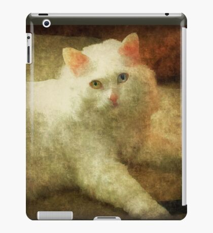 Vintage Kitty Cat iPad Case/Skin