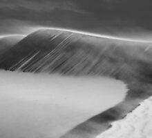 Sea of Sand by Alex Fricke