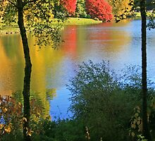 Autumn Colours in Wiltshire by RedHillDigital