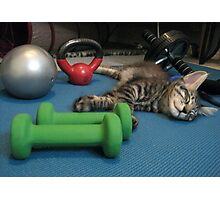Mikino doesn't workout on Caturday's!  Photographic Print