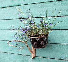 flower pot with flowers by mrivserg