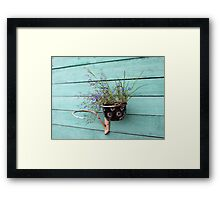 flower pot with flowers Framed Print