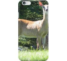 Hey! Lady With The Camera! Go Away! iPhone Case/Skin