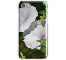 Pink and White Morning Glory iPhone Case/Skin