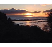 Sunset at the Penguin Colony Photographic Print