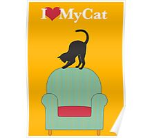 Cat on a turquoise armchair Poster