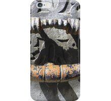 The Knocker iPhone Case/Skin