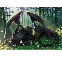 Art Of Dragon trainer Photographic Print