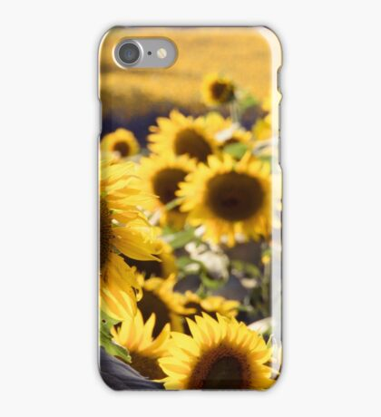 Sunflowers 3 iPhone Case/Skin