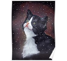 Kitten in Snow, Pastel Painting, Winter, Tuxedo Cat, Snowflakes Poster