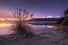 Morning Bliss - New Zealand by Michael Treloar