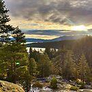 Sunrise at Eagle Falls Trail, South Lake Tahoe by Robin Black