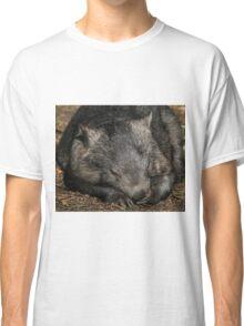 Sleeping Wombat Classic T-Shirt
