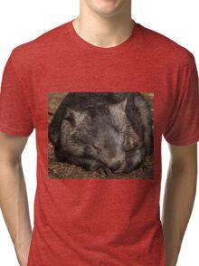 Sleeping Wombat Tri-blend T-Shirt