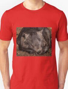 Sleeping Wombat T-Shirt