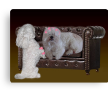 JUST ONE MORE CURLER SO U CAN SEE ..DOGS (CANINES) PUTTING CULERS IN HAIR - PICTURE - CARD Canvas Print