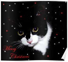 Merry Christmas (2) Poster