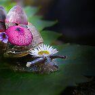 Snail garden by Josie Jackson