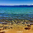 Lester Beach by Robin Black