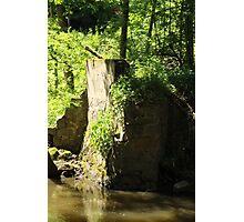 Der Fels im Wald Photographic Print