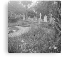 Path Through the Cemetery Canvas Print