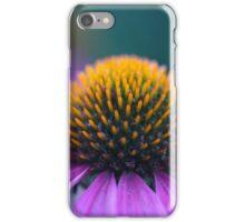 Purple coneflower (Echinacea purpurea) iPhone Case/Skin