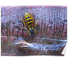 Tree Wasp sippy cup Poster