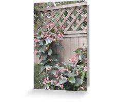 Dragon Wing Begonias - Digital Oil Painting Greeting Card