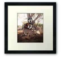 Dogs with game face on .35 Framed Print