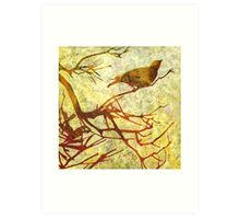 Honey Eater & Banksia  4  Art Print
