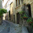 Vaison la Romaine - alley by hans p olsen