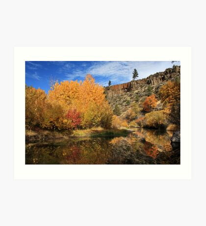 Autumn Reflections In The Susan River Canyon Art Print