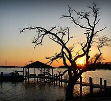 Gulf Coast Sunset by Rose Cavaco