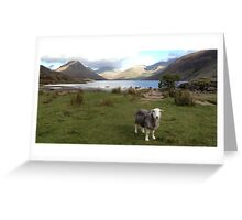 Wast Water with a Herdwick Sheep Greeting Card