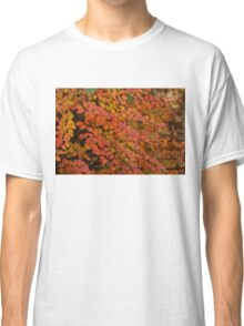 Multicolored Miniatures -  Classic T-Shirt