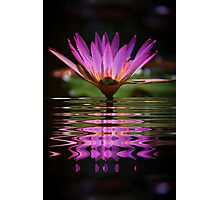 Purple Fantasy Photographic Print