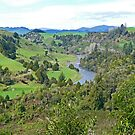 View from Piriaka Lookout by Graeme  Hyde